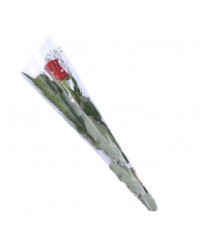 01- ROSA INDIVIDUAL VERMELHAS   (SOMENTE ACIMA DE 50 ROSAS)